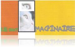 le chat imaginaire