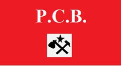 pcb1_thumb[4]